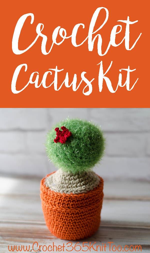 Cute Crochet Cactus Kit