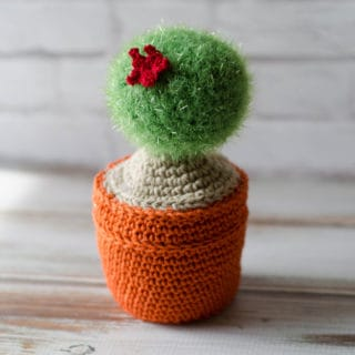 Crochet Cactus Kits