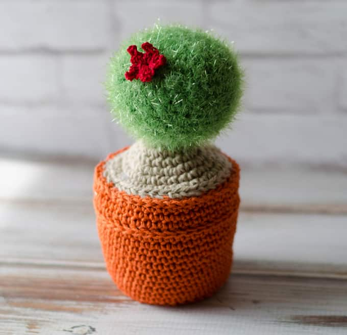 Cute Crochet Cactus Kit