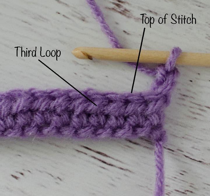 Purple HDC Sample Showing 3rd Loop